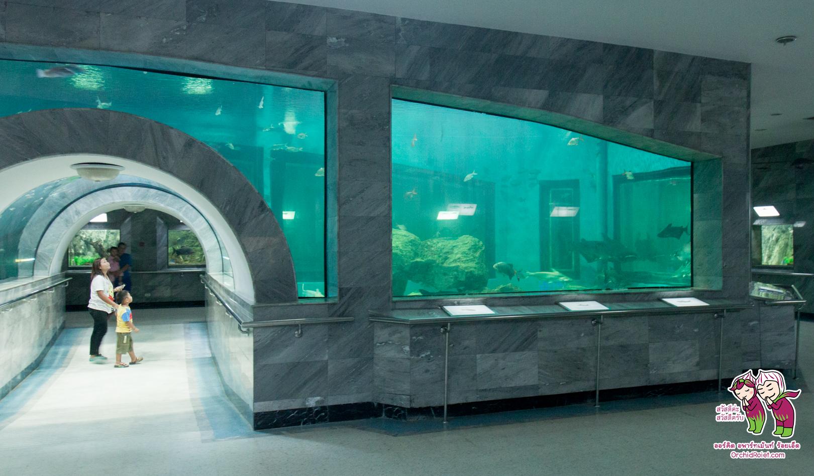 Aquarium_Roiet_001